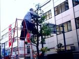 20091226_船橋市本町_イルミネーション_撤去_1546_DSC03437