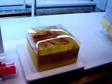 20100521_JR東日本_JR東京駅_サウスコート_2148_DSC09857