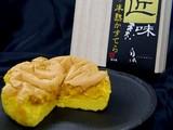 20100607_JR東日本_JR東京駅_サウスコート_042