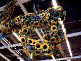 20100626_IKEA船橋_ミッドサマー_スウェーデン夏至祭_1239_DSC05830