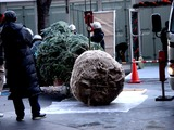 20101209_東京国際フォーラム_クリスマス_0825_DSC05940