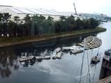 20101031_市川市二俣_ハヤシ艇船_貸しボート_ハゼ釣り_0936_DSC08444