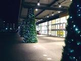 20101111_船橋市浜町2_IKEA船橋_クリスマス_2025_DSC00918