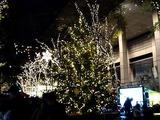 20101210_東京国際フォーラム_クリスマス_2130_DSC06113