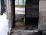 20100815_習志野市袖ヶ浦西小学校_シカ_鹿_1031_DSC05132