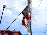 20100710_船橋市湊町_八剱神社例大祭_第八自治会_1449_DSC08043