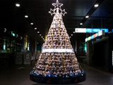 20101220_東京国際フォーラム_クリスマス_ツリー_2220_DSC07672