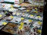20100904_船橋市市場_中央卸売市場_ふなばし楽市_0924_DSC07458