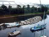 20101031_市川市二俣_ハヤシ艇船_貸しボート_ハゼ釣り_0936_DSC08445