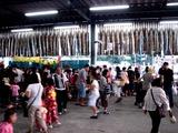 20100828_船橋市市場1_船橋市中央卸売市場_盆踊り_1753_DSC07060