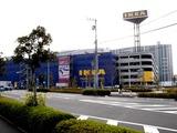 20101121_船橋市浜町_IKEA船橋_モミの木クリスマスツリー_0955_DSC02725
