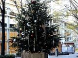 20101210_東京国際フォーラム_クリスマス_0827_DSC06045
