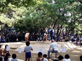 20101016_船橋大神宮_奉納子ども相撲大会_1223_DSC05756