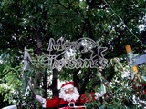 20101219_習志野市谷津_谷津遊路商店街_クリスマス_1404_DSC07581