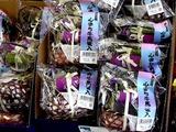 20100809_お盆用品_線香_飾り_馬_牛_1054_DSC03844T