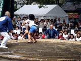 20101016_船橋大神宮_奉納子ども相撲大会_0853_DSC05512