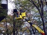 20101206_東京国際フォーラム_クリスマス_0834_DSC05670