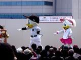 20101205_船橋東武_千葉ロッテマリーンズトークショー_1105_DSC05428