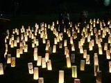 20101120_千葉市稲毛_第5回夜灯_よとぼし_公園_1749_DSC02665