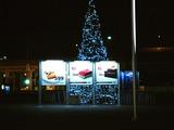 20101111_船橋市浜町2_IKEA船橋_クリスマス_2034_DSC00933