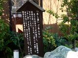 20101212_船橋市田喜野井6_みどりの湯船橋田喜野井店_1031_DSC06595