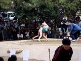 20101016_船橋大神宮_奉納子ども相撲大会_1242_DSC05778