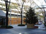 20101210_東京国際フォーラム_クリスマス_0827_DSC06049