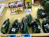 20100822_船橋市高根町_野菜直売所しんぱたけ_1103_DSC06316