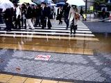 20101203_関東圏_師走の嵐_低気圧_大荒れの天気_0837_DSC04847