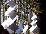 20101231_千葉県船橋市西船5_葛飾神社_初詣_1232_DSC09178