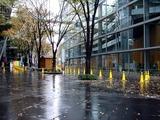 20101208_東京国際フォーラム_クリスマス_0840_DSC05898