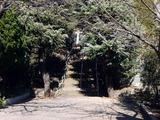 20101231_船橋市西船1_山野浅間神社_1238_DSC09184