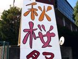 20101023_市川市二俣_東京経営短期大学_秋桜祭_1011_DSC07073
