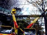 20101206_東京国際フォーラム_クリスマス_0834_DSC05663