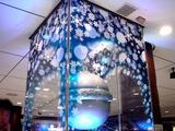 20101122_JR東日本_JR東京駅_銀の鈴_2009_DSC03471