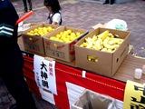 20101017_船橋市小栗原_稲荷神社_大祭禮_1002_DSC06161
