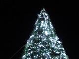 20101111_船橋市浜町2_IKEA船橋_クリスマス_2024_DSC00916