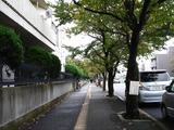 20101031_東海大学付属浦安高校中等部_建学祭_1019_DSC08565