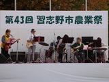 20101113_習志野市鷺沼2_第43回習志野市農業祭_1127_DSC01094