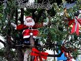 20101219_習志野市谷津_谷津遊路商店街_クリスマス_1404_DSC07580