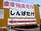 20100822_船橋市高根町_野菜直売所しんぱたけ_1105_DSC06323