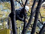 20101206_東京国際フォーラム_クリスマス_0835_DSC05679