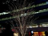 20101224_東京有楽町_クリスマス_イルミネーション_1938_DSC08040
