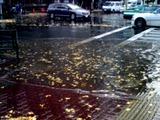 20101203_関東圏_冠水_水没_042
