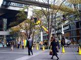20101206_東京国際フォーラム_クリスマス_0834_DSC05666