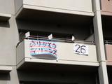 20101121_千葉ロッテマリーンズ_幕張優勝パレード_1040_DSC02831