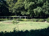 20101011_船橋市行田_千葉県立行田公園フェスタ_1145_DSC05211