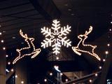 20101222_東京国際フォーラム_クリスマス_2102_DSC07819