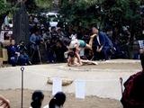 20101016_船橋大神宮_奉納子ども相撲大会_1242_DSC05779