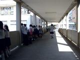 20100919_千葉日本大学第一中高学校_習陵祭_1246_DSC00527